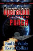 Operation Sucker Punch